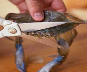 Cutting Crabs