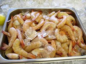 fresh maryland shrimp